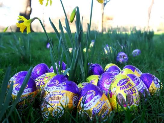 EasterCadbury